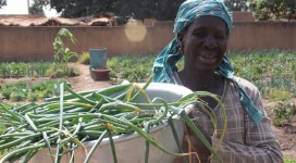 Woman-with-Veggie-bowl-for-Village-Ag-Dev-Project